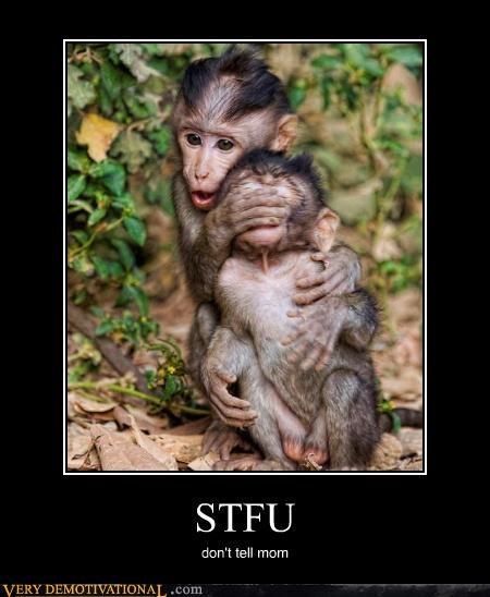 silence,stfu,monkey