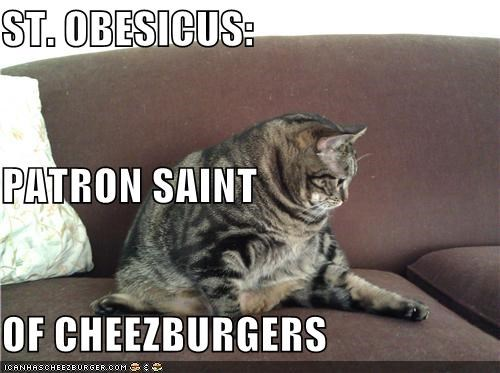 Cheezburger Image 4478462720