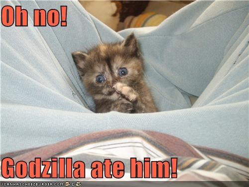 Oh no!  Godzilla ate him!