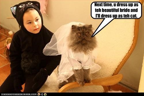 Next time, u dress up as teh beautiful bride and I'll dress up as teh cat.