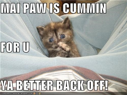 MAI PAW IS CUMMIN  FOR U YA BETTER BACK OFF!