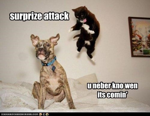 surprize attack u neber kno wen its comin'