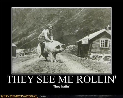 rollin-hatin awesome pig - 4480870144