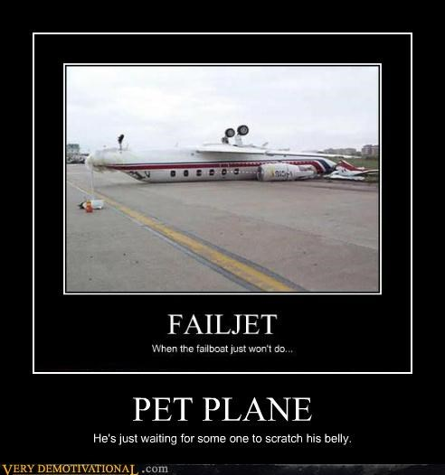 scratch plane belly pet - 4481726208