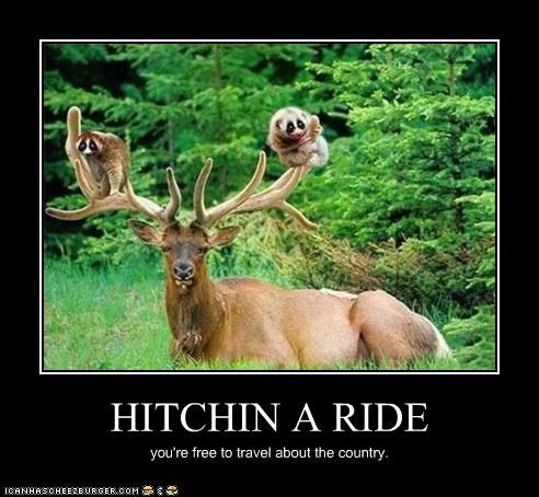 HITCHIN A RIDE you're free to travel about the country.