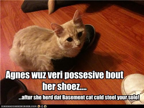 Agnes wuz veri possesive bout her shoez.... ...aftur she herd dat Basement cat culd steel your sole!