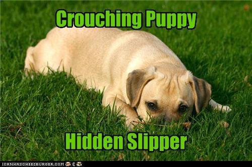 crouching,hidden,labrador,parody,pun,puppy,slipper