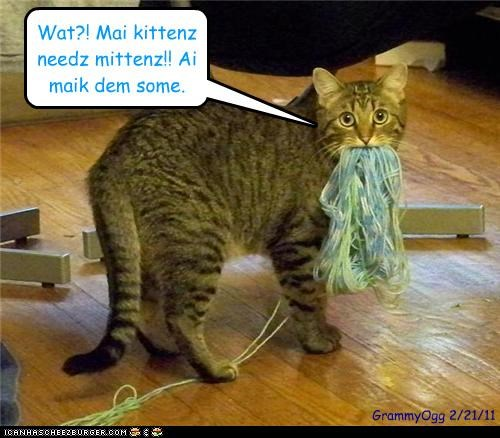 Cheezburger Image 4484265984