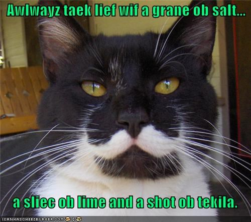 advice,always,and,caption,captioned,cat,grain,Hall of Fame,lesson,life,lime,salt,shot,slice,take,tequila