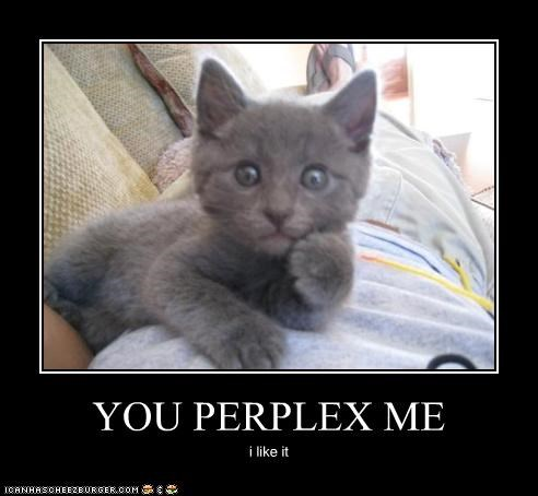caption captioned cat do want Hall of Fame kitten like paradox perplex perplexed - 4484927744