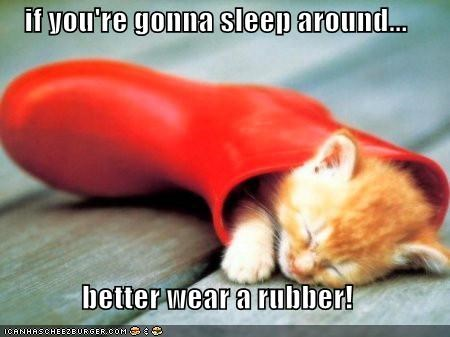 asleep,boot,caption,captioned,cat,double meaning,euphemism,Hall of Fame,I Can Has Cheezburger,insinuating,kitten,protection,rubber,sleep,sleeping,tabby
