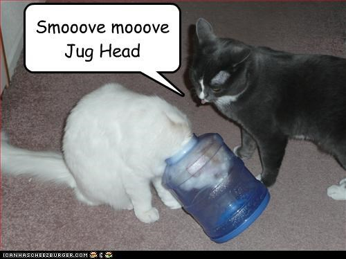 Smooove mooove Jug Head