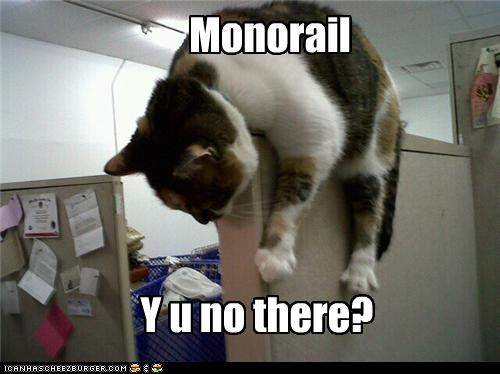 Cheezburger Image 4488707072