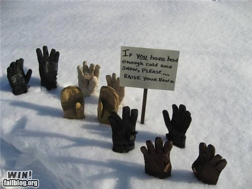 clever signs snow snowpocalypse winter Winter Wonderland - 4488881152