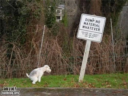 disobedience dogs poop signs warning - 4488980992