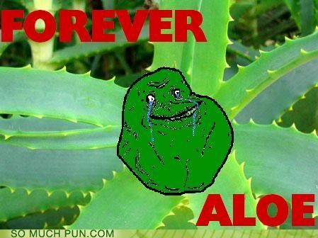 aloe alone forever forever alone letter meme missing saguaro - 4489223680