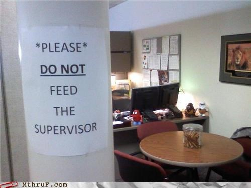 boss note Office sign supervisor - 4489315840