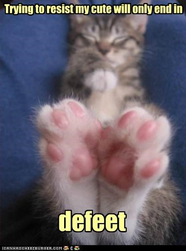 caption captioned cat cute defeat feet Hall of Fame kitten outcome pun resist sleeping trying