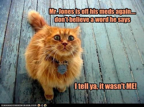 Mr. Jones is off his meds again.... don't believe a word he says I tell ya, it wasn't ME!