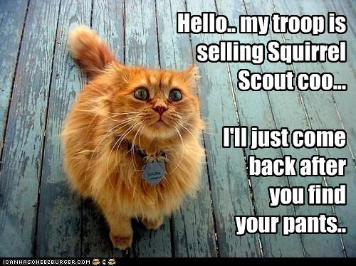afraid,back,caption,captioned,cat,come,cookies,door to door,find,freaked out,human,later,pants,scout,selling,squirrel,strange