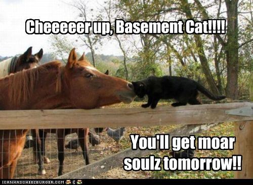 Cheeeeer up, Basement Cat!!!! You'll get moar soulz tomorrow!!