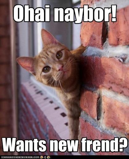 Ohai naybor! Wants new frend?