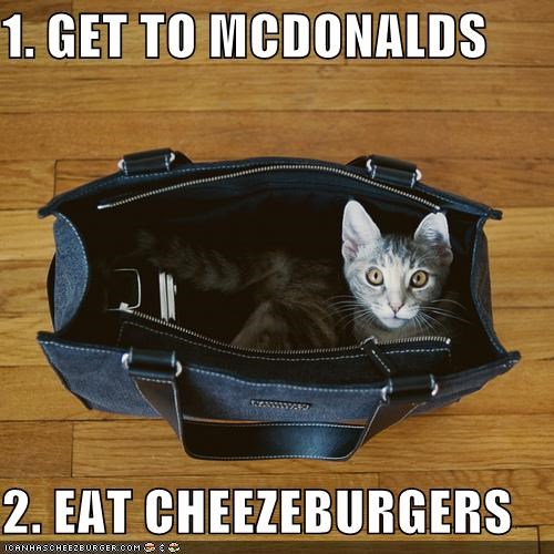 Cheezburger Image 4491154944