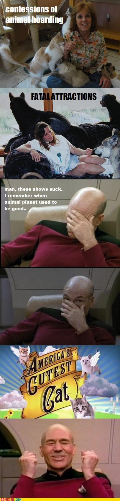 animals,Captain Picard,Cats,Caturday,face palm,Star Trek