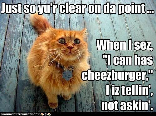 Cheezburger Image 4491512576