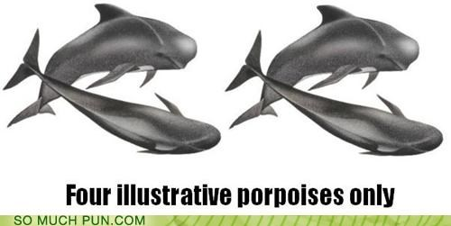 four illustrated illustrative literalism off-rhyme only porpoise porpoises purposes similar sounding