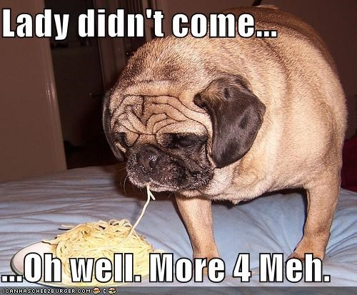 come didnt eating fat food lady lady and the tramp meh more for me noms noodles oh well pug spaghetti