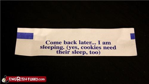 food,fortune cookie,sleep