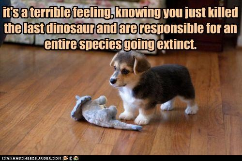 corgi dinosaur dinosaurs entire extinct extinction feeling guilt killed last puppy remorse responsible Sad species stuffed animal terrible