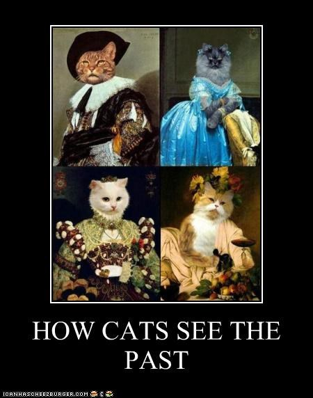 art,cat,demotivational,funny,painting,shoop