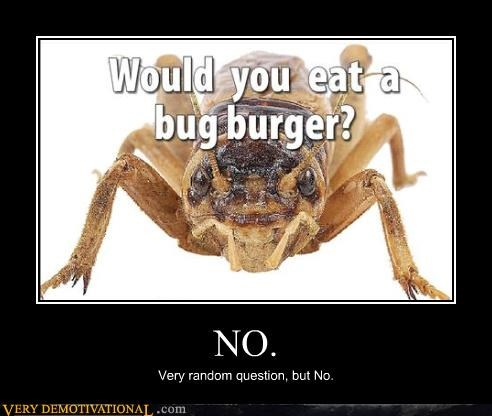 bug eat no sandwich - 4492446720