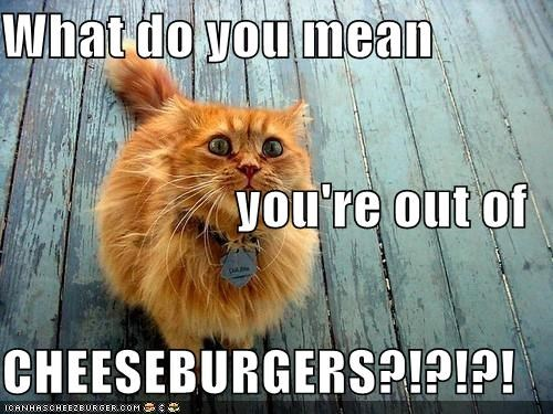 Cheezburger Image 4492842752