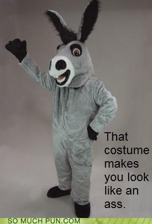 ass costume critique donkey honesty insult just saying literalism look obvious resemblance statement