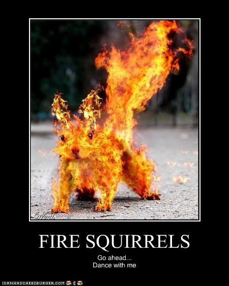 FIRE SQUIRRELS Go ahead... Dance with me