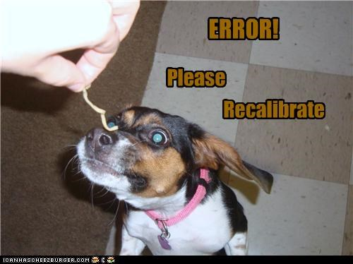 eating,error,FAIL,jack russell terrier,noms,noodle,please,recalibrate