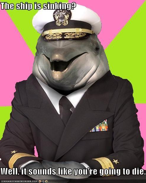 dolphin doomed Memes sinking ship - 4494468608