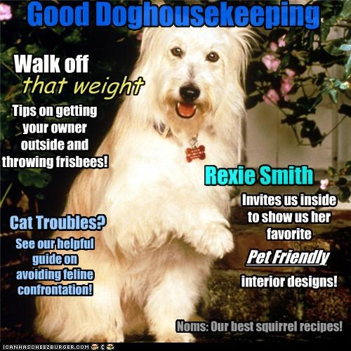 cover,doghouse,good housekeeping,headline,headlines,magazine,pun,sheepdog