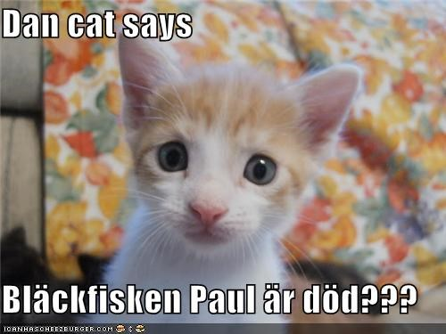 Cheezburger Image 4495119872
