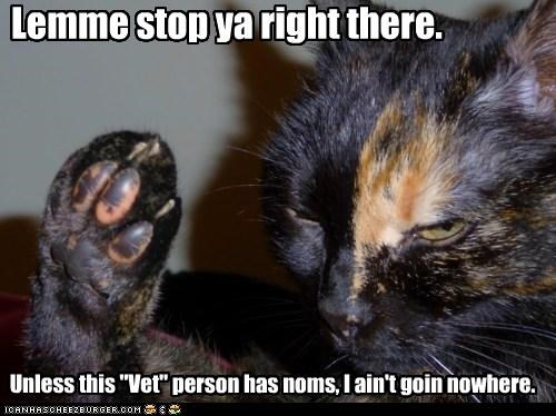 caption,captioned,cat,disinterested,do not want,noms,objection,stop,ultimatum,unless,vet
