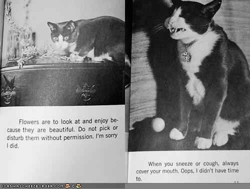 1960s black and white etti-cat history lolcats manners polite vintage - 4495494656