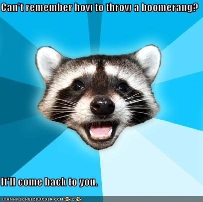 boomerang,forgot,itll-come-back-to-you,Lame Pun Coon