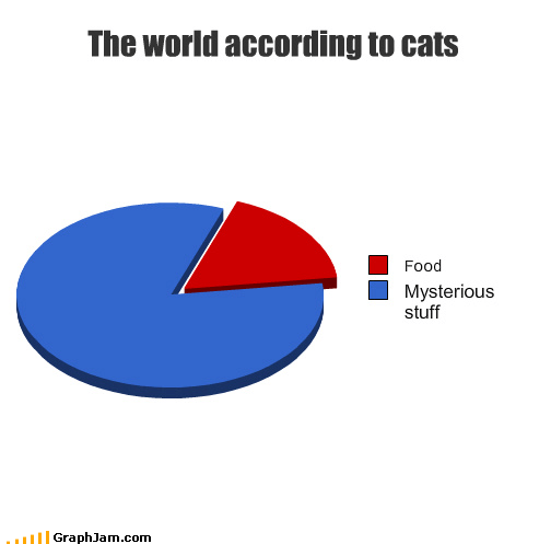 food Cats funny graphs - 4496043008