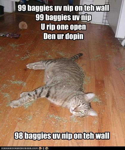 99,bag,baggies,bags,caption,captioned,cat,catnip,counting,dope,drugs,high,nip,parody,song