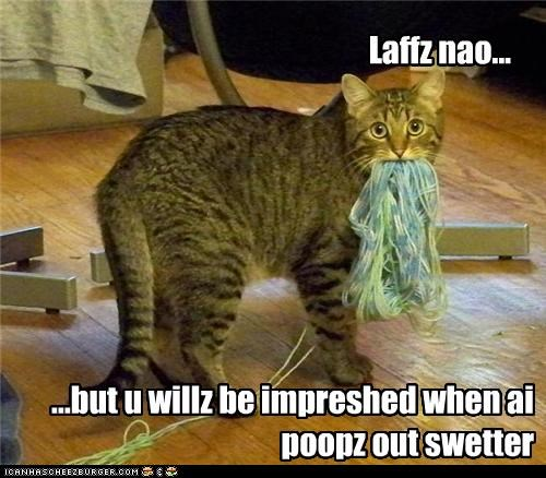 Laffz nao... ...but u willz be impreshed when ai poopz out swetter