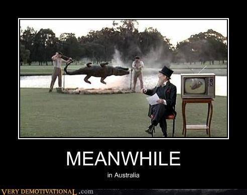 australia Meanwhile crocodile - 4497313536