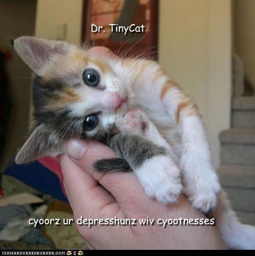 Dr. TinyCat cyoorz ur depresshunz wiv cyootnesses